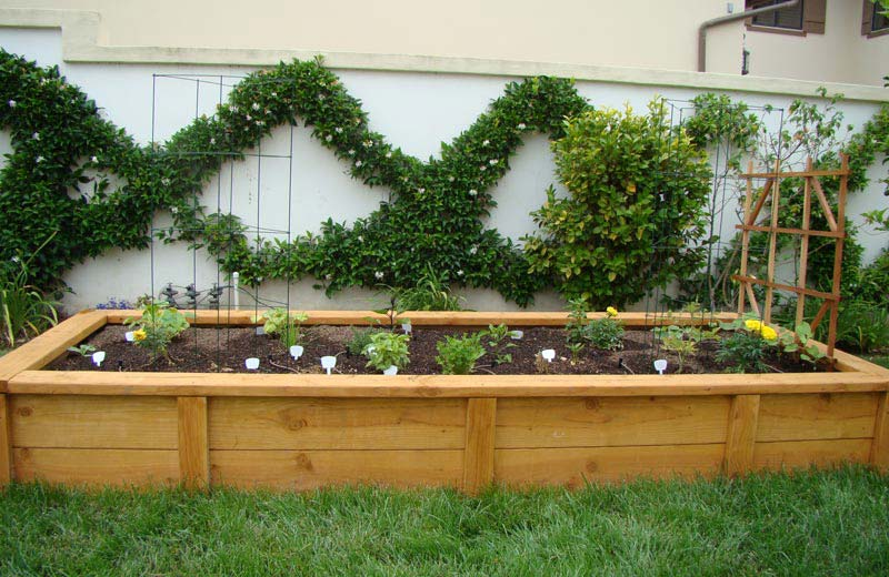 Vegetable Gardening with Raised Beds (16)