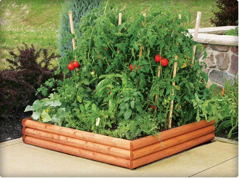 vegetable gardening with raised beds 3