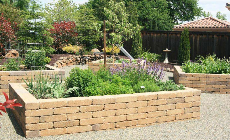 Vegetable Gardening with Raised Beds (5)