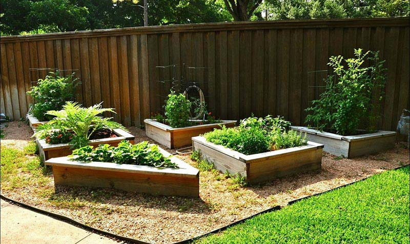 Vegetable Gardening with Raised Beds (6)