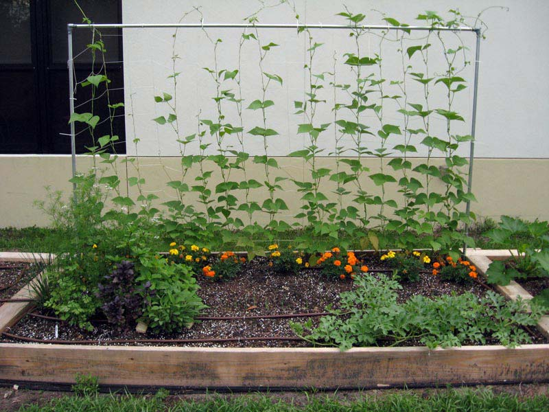 vegetable gardening with raised beds quiet corner