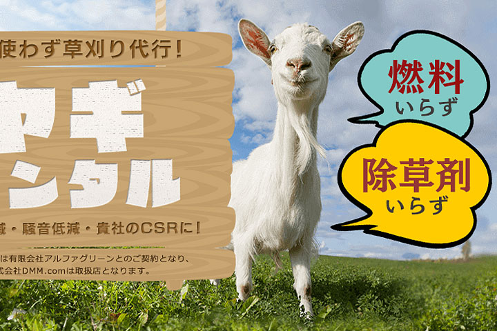 Rent-a-goat service now available in Japan
