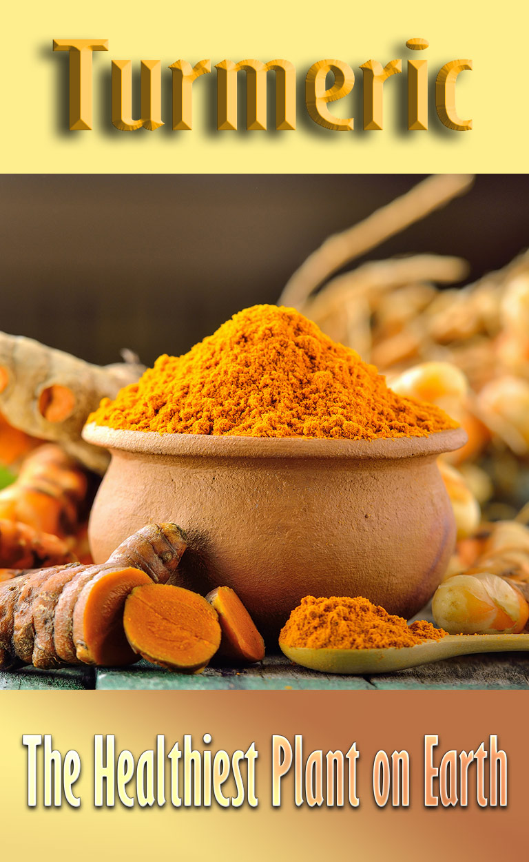 Turmeric – The Healthiest Plant on Earth