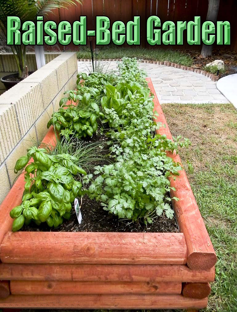 Tips for making a raised bed garden quiet corner for Making raised garden beds