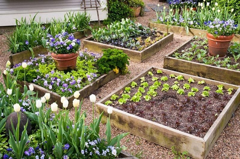 How to Build A U-Shaped Raised Garden Bed h (1)