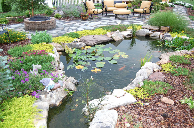 Inspiring backyard pond ideas quiet corner for Design fish pond backyard