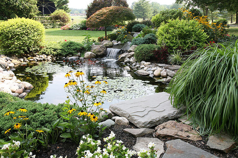 Inspiring backyard pond ideas quiet corner for Koi pond plant ideas