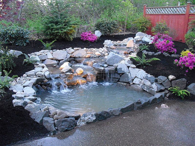 Inspiring backyard pond ideas quiet corner for Outdoor goldfish pond ideas