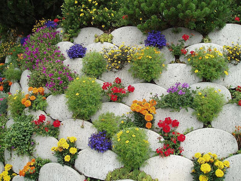 Quiet Corner:Stunning Rock Garden Design Ideas - Quiet Corner on Rock Backyard  id=99386