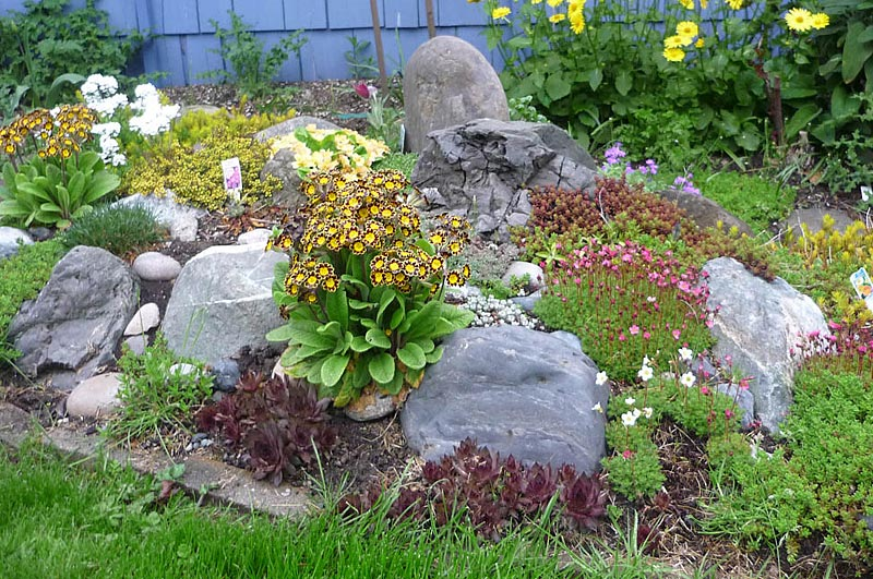 Stunning rock garden design ideas corner stunning rock Small rock garden
