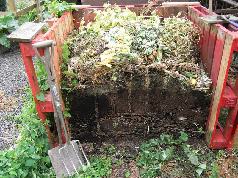 Compost - a Recipe for Success!