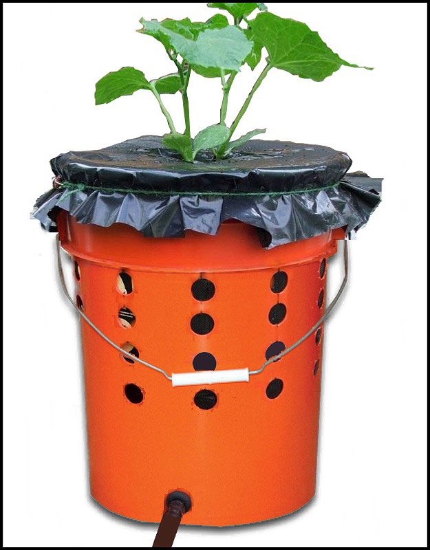 DIY - Self Watering Tomato Buckets