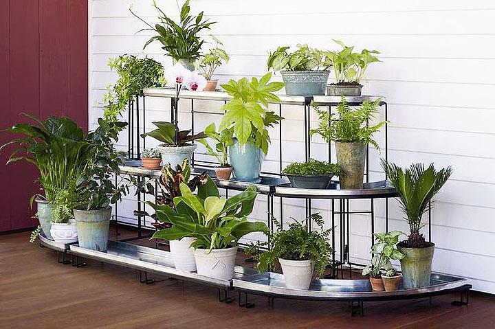 Create a Container Garden