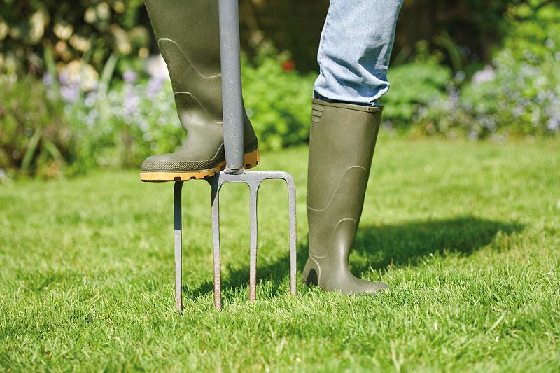 Winter Lawn Care - Winter Lawn Maintenance