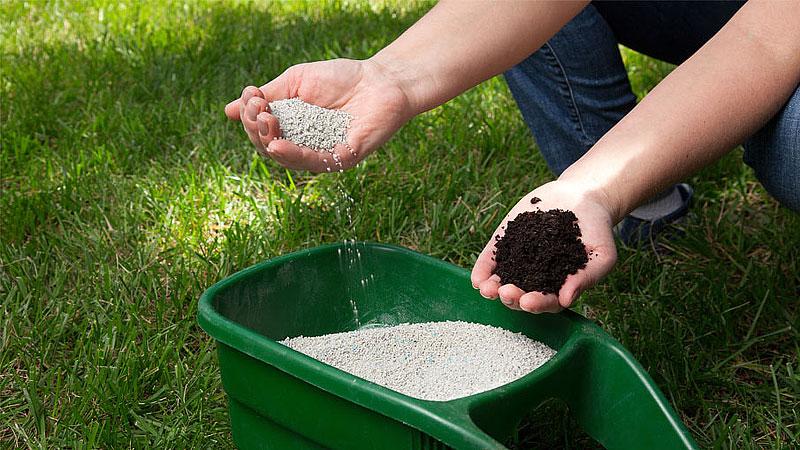 Fall Gardening Checklist