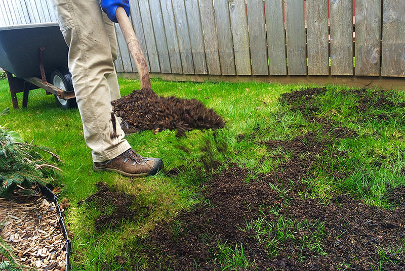 Landscaping Leveling Yard : Topdressing level out your lawn quiet corner