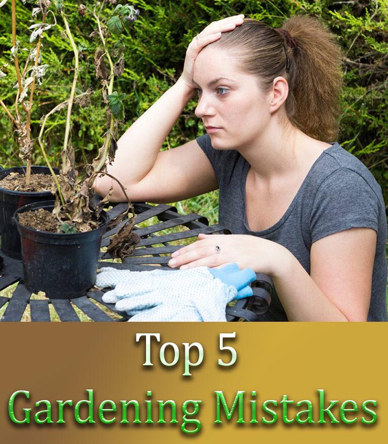 Top 5 Gardening Mistakes