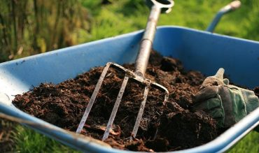 Compost – a Recipe for Success!