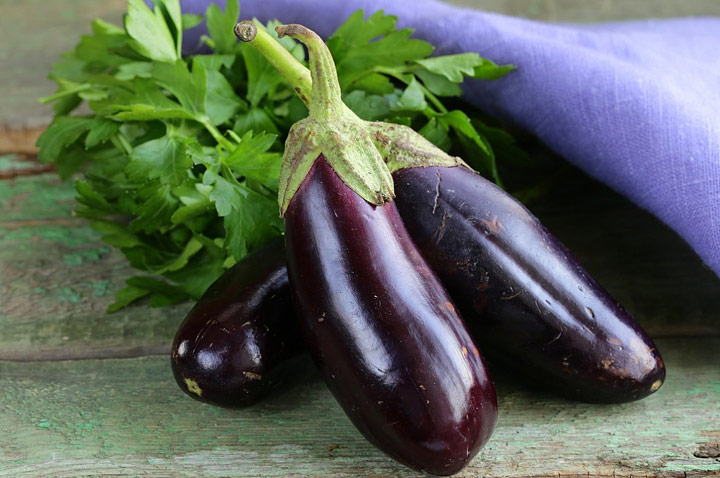 How to Grow Eggplants - Gardening Tips