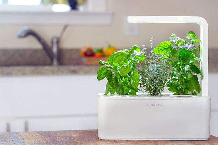 Click and Grow - Smart Herb Garden