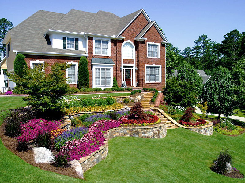 Choosing Perfect Landscaping Plants for Outdoors