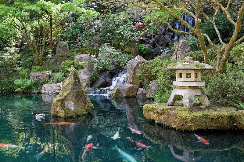 Japanese gardens design quiet corner for Alexander jehle