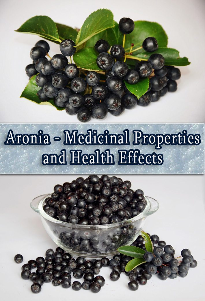 Aronia – Medicinal Properties And Health Effects