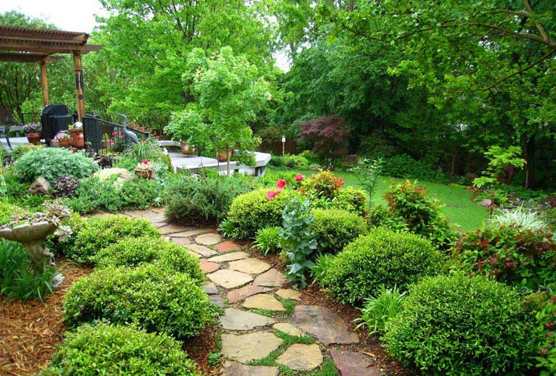 Backyard Landscape Ideas with Natural Touch