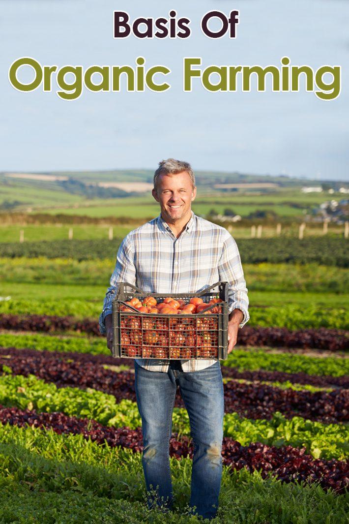 Basis Of Organic Farming