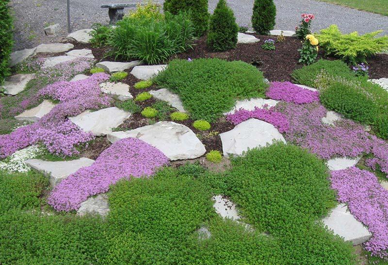 Quiet Corner:Beautiful Rock Garden Ideas - Quiet Corner on Backyard Rock Garden Ideas id=88071