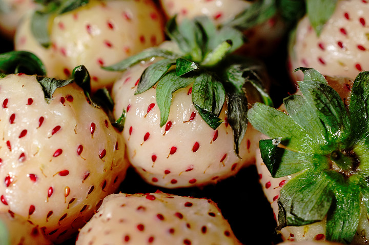Pineberries – Growing Guide