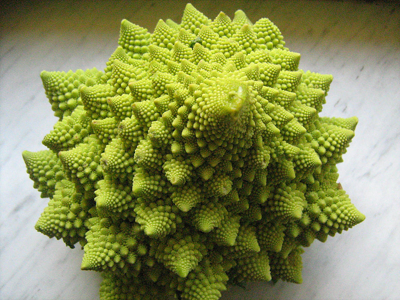Weird Vegetables You've Probably Never Heard Of