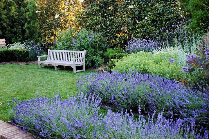 Creating a Blue Garden