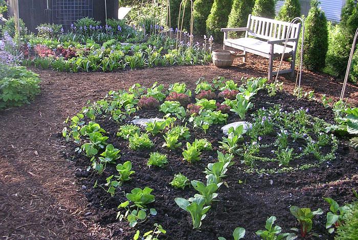 Ultimate Kitchen Garden Planner Quiet Corner