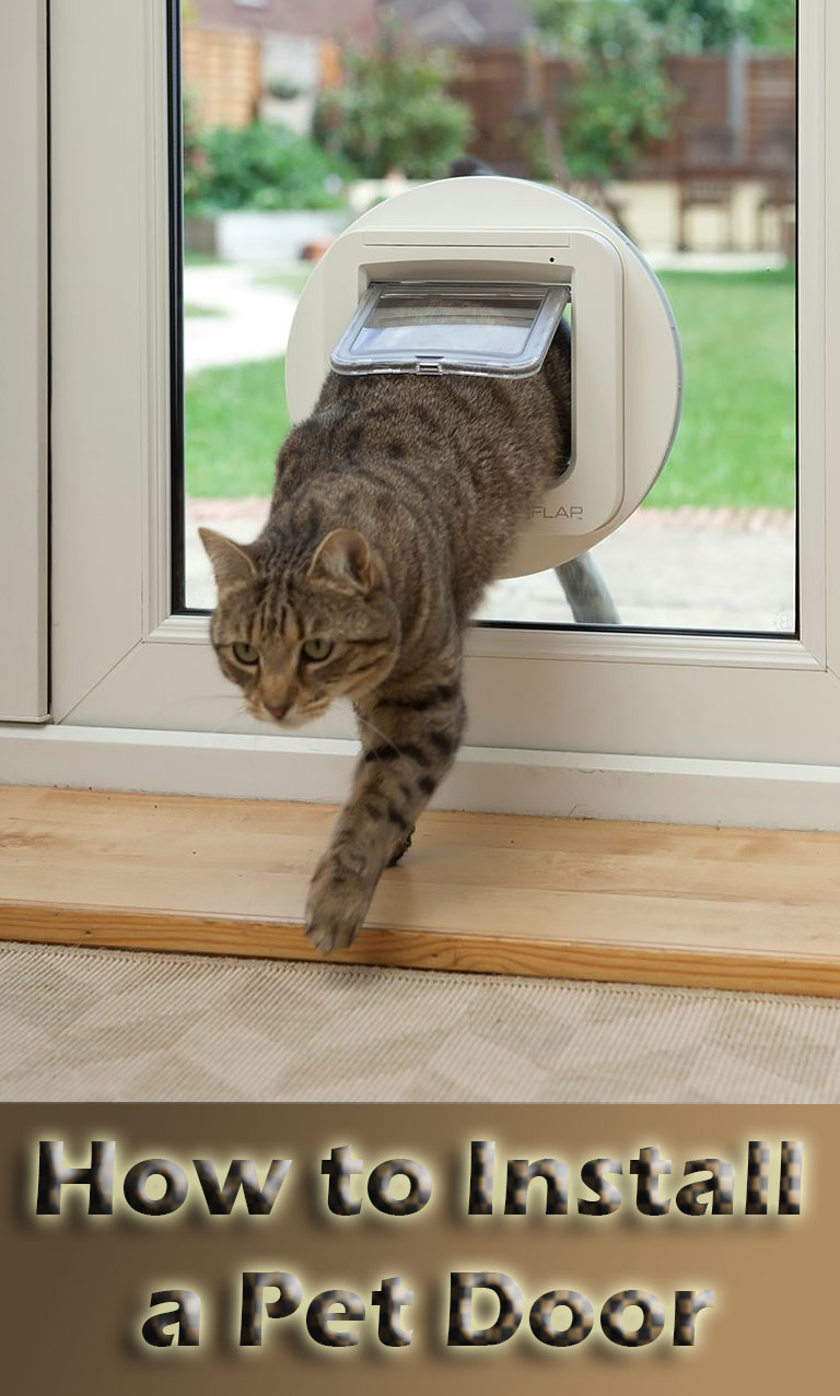 How to Install a Pet Door