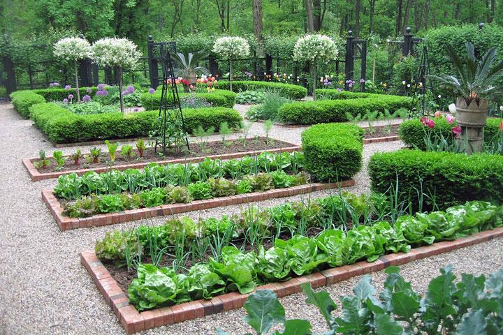 Ultimate Kitchen Garden Planner