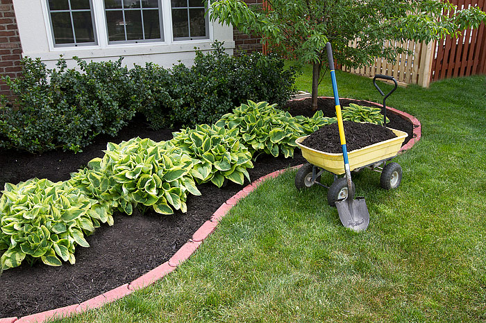 Get Your Yard Summer-Ready