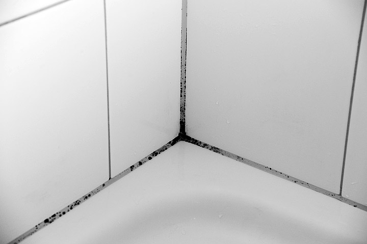 how to clean moldy caulk in shower