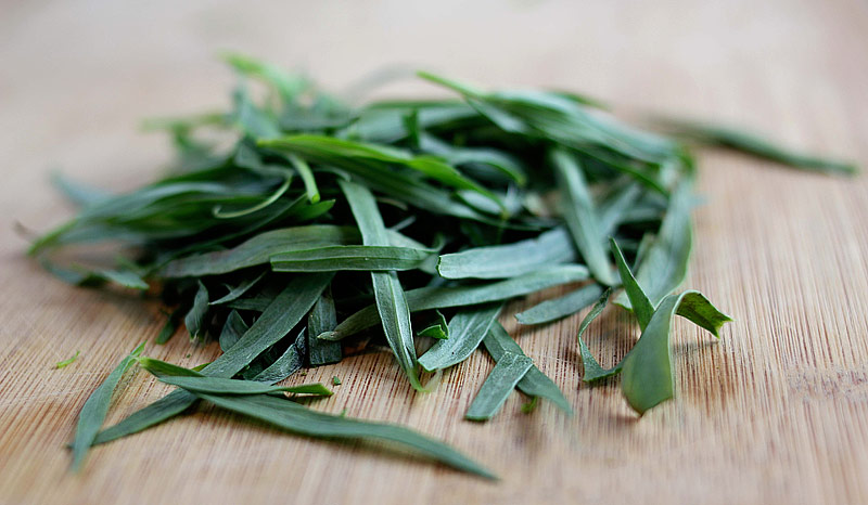 Tarragon - Growing Guide