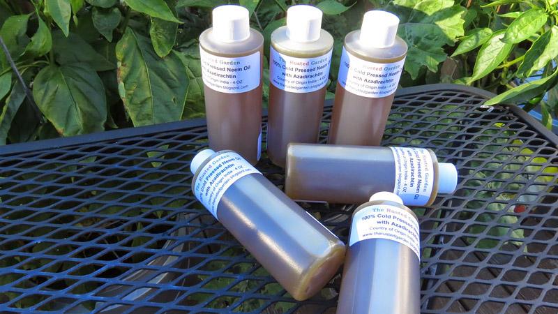 Neem Oil Works Wonders For Your Plants & Garden