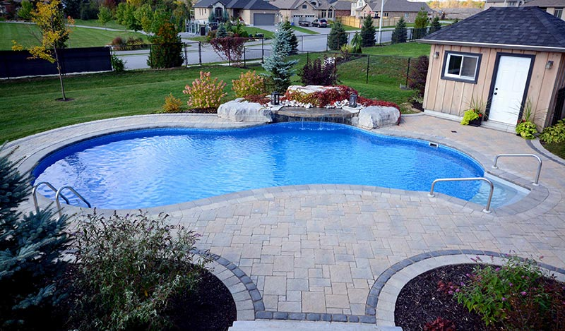 Free form pool designs ideas quiet corner for Pool design education