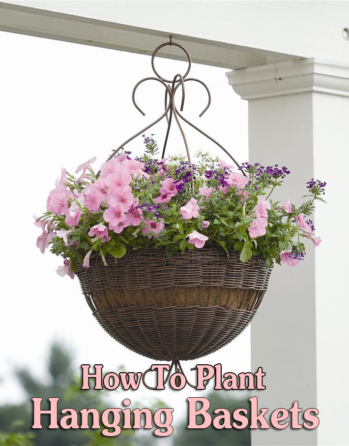 How To Plant Hanging Baskets and Containers - Quiet Corner