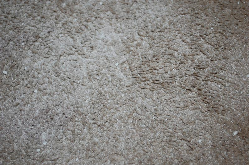 Natural Carpet Cleaner