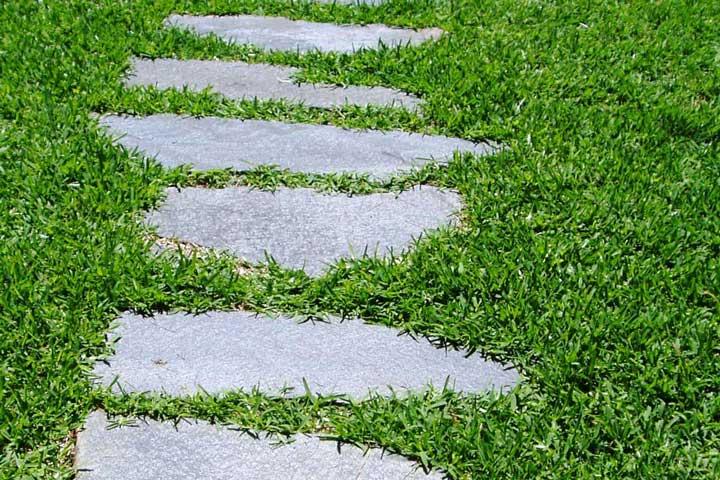 St augustine grass quiet corner for Flooring st augustine