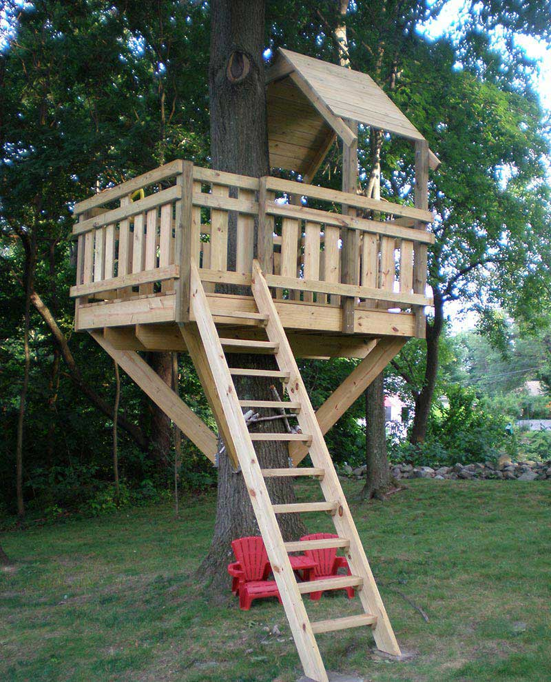 Wonderful Tree Houses Ideas