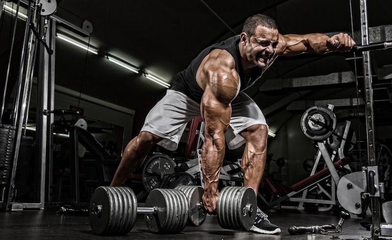 Top 20 Bodybuilding Tips for Beginners