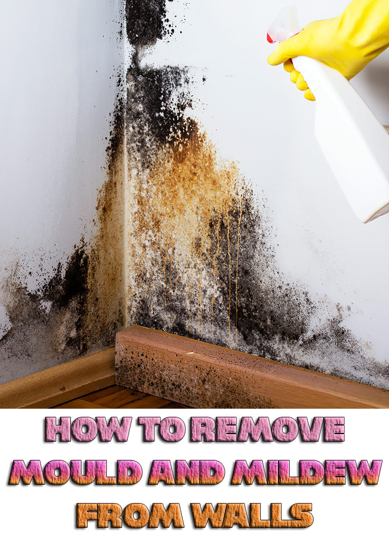 How to Remove Mould and Mildew from Walls