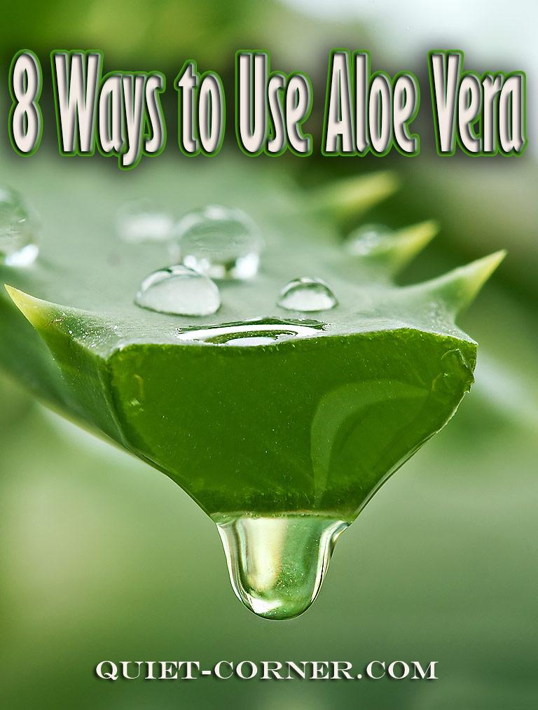 8 Ways to Use Aloe Vera