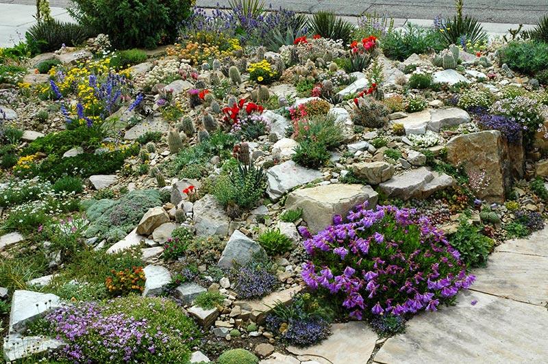 Build a rock garden quiet corner for Creating a rock garden