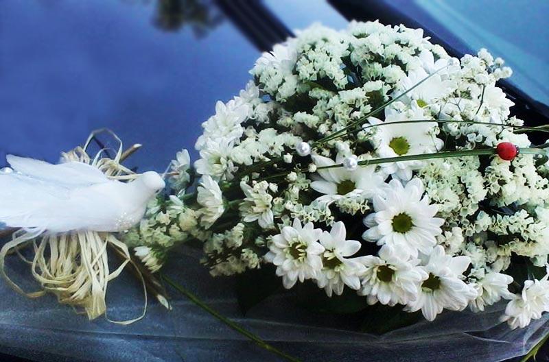 Cut Flowers - Bouquets and Flower Arrangements